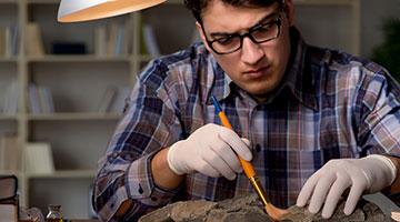 Scientist examining fossil