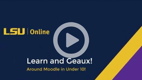 Screenshot of LSU Online moodle