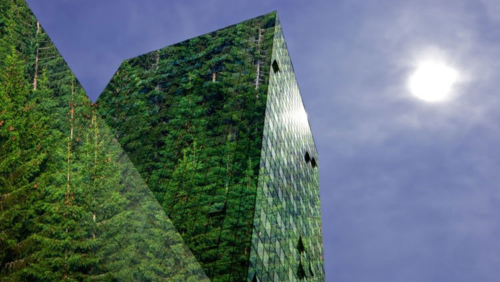 The image of a spruce forest is reflected in the glass walls of a modern office building.